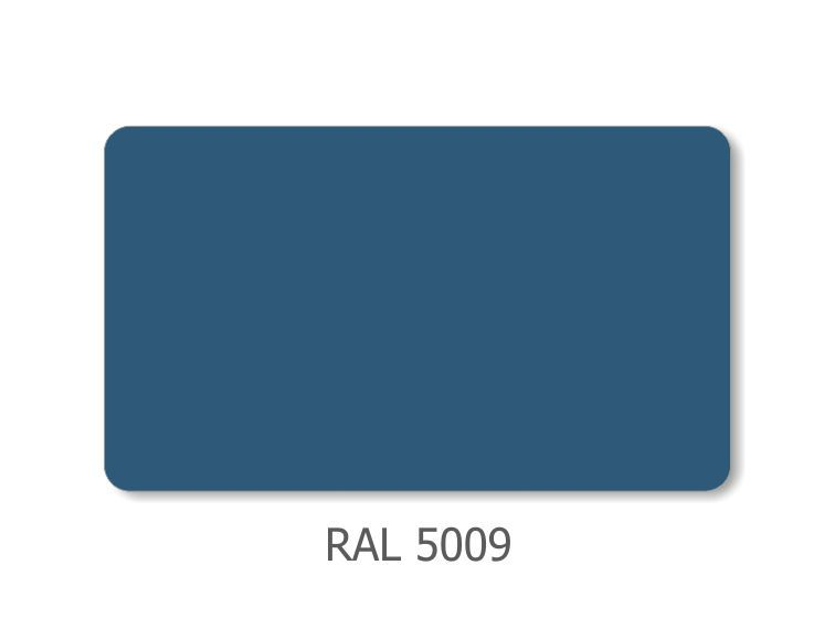 RAL_5009